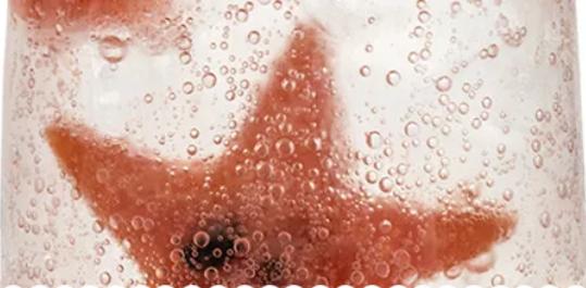 【SODA厨房|第6期】泡在一起的西瓜之夏